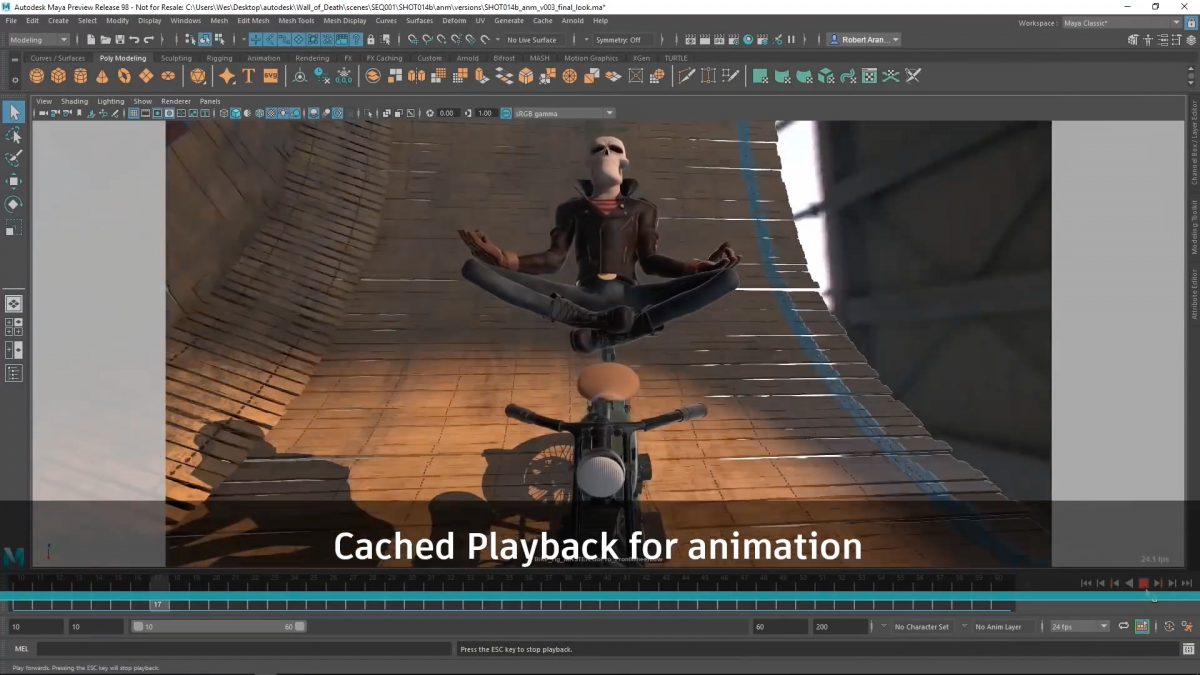 Maya 2019 cached playback